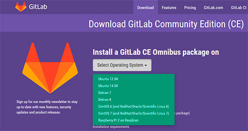 GitLab S.O. Opciones Instalación